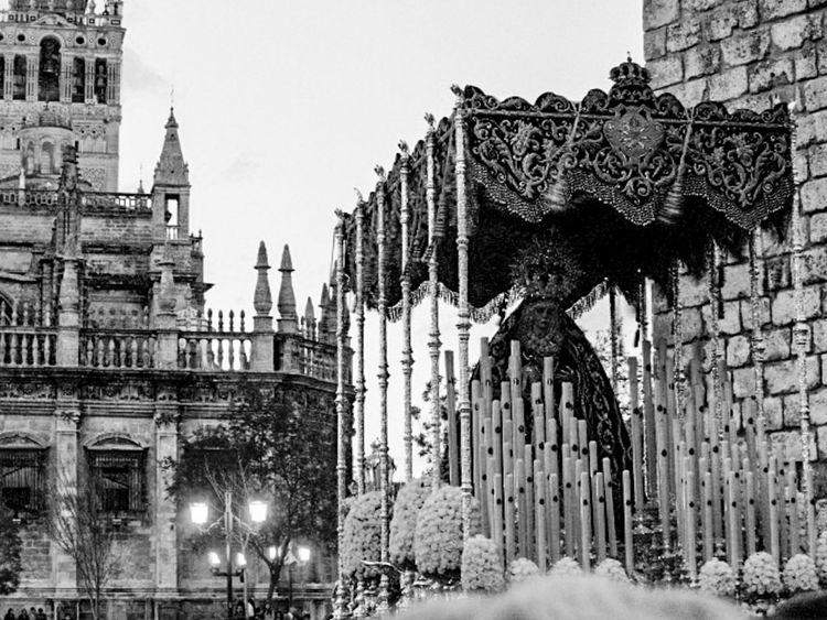 Semana Santa en Sevilla. Andalucía. España. Street Photography Sevilla Blackandwite Blancoynegro Andalucía Seville Fotocallejera Streetphotography Blackandwhite España Arquitecture Andalusia Semana Santa Arquitectura Arquitecture Monochrome Semanasanta