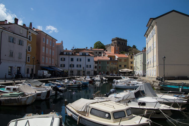 Small harbor in the village of Muggia near Trieste/Italy Nautical Vessel Water Transportation Mode Of Transportation Sky Moored Nature Architecture Building Exterior Built Structure Day Outdoors Muggia, Trieste Adriatic Sea Adriatic Coast Adriatico Mediterranean  Mediterranean Landscape Italy❤️ Italian Village  Harbor