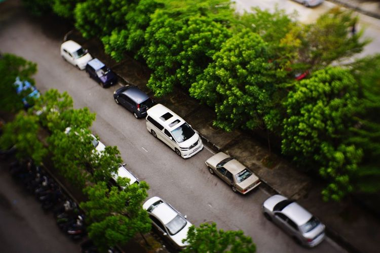 High Angle View Car Transportation Mode Of Transport City Street Aerial View Street City City Life Plant Outdoors Day Tree No People Nature