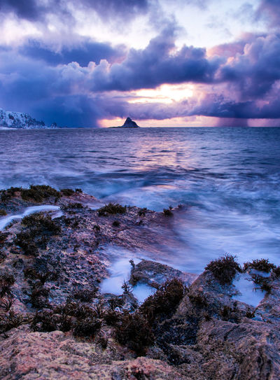 Norway Seaweed Arctic Beach Beauty In Nature Cloud - Sky Clouds Cold Day Horizon Over Water Idyllic Nature No People Ocean Outdoors Rock - Object Scenics Sea Sky Sunset Tranquil Scene Tranquility Water Wave