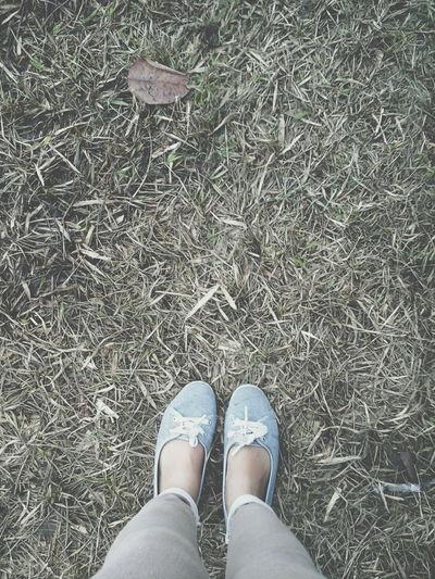 Dry grass Adventure Festival