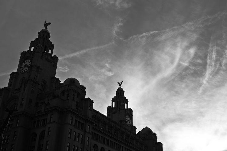 Architecture Liver Buildings Liverpool Silhouette United Kingdom Birds Black Blackandwhite Building Clock England Sky
