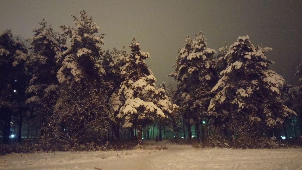 Наконец то зимааа))