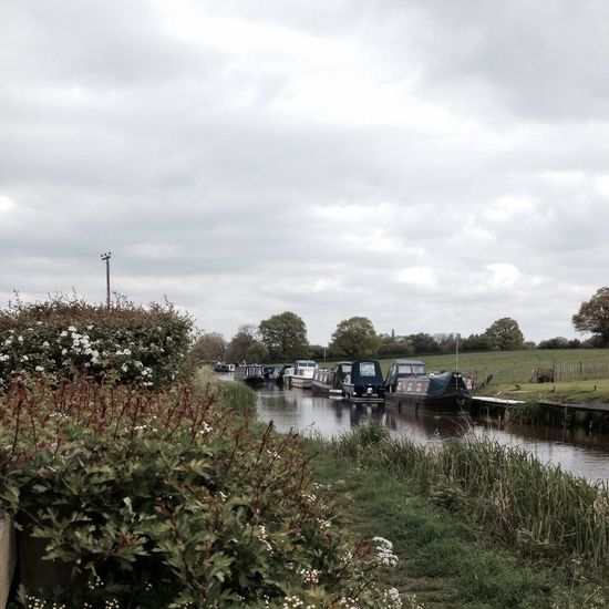 Canal IPSNoFilter