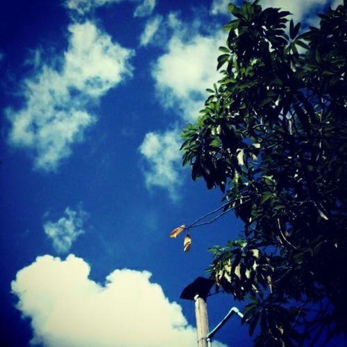 Cloudy June2 Lovelysunday Hangout