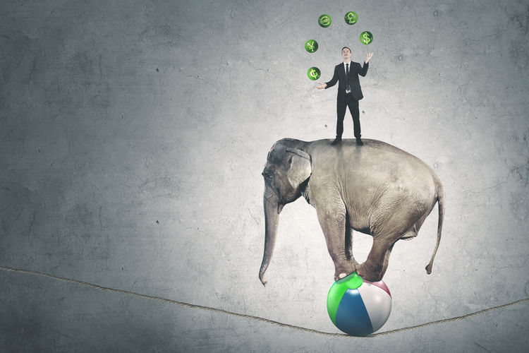 Businessman Juggling Symbols On Elephant Balancing Over Rope Against Wall