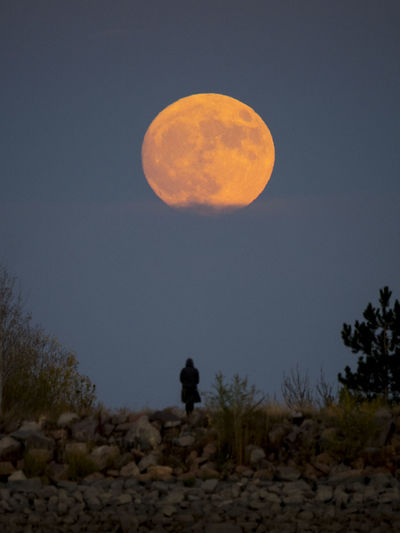 Supermoon rise 2016. Adult Astronomy Day Full Length Landscape Men Moon Nature One Person Outdoors People Silhouette Sky Sun Superman Supermoon 2013 Tree