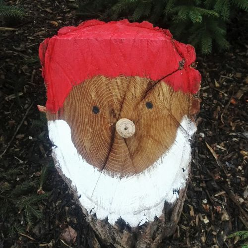 Day No People Outdoors Red Close-up Nature Wood Wood Structure Santa