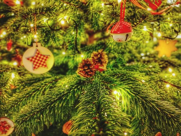 Tree Christmas Decoration Christmas Ornament Christmas Christmas Lights Branch Celebration Hanging Fir Tree christmas tree