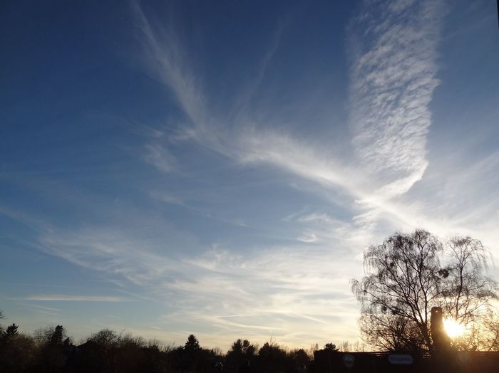 Sky Trails Sky