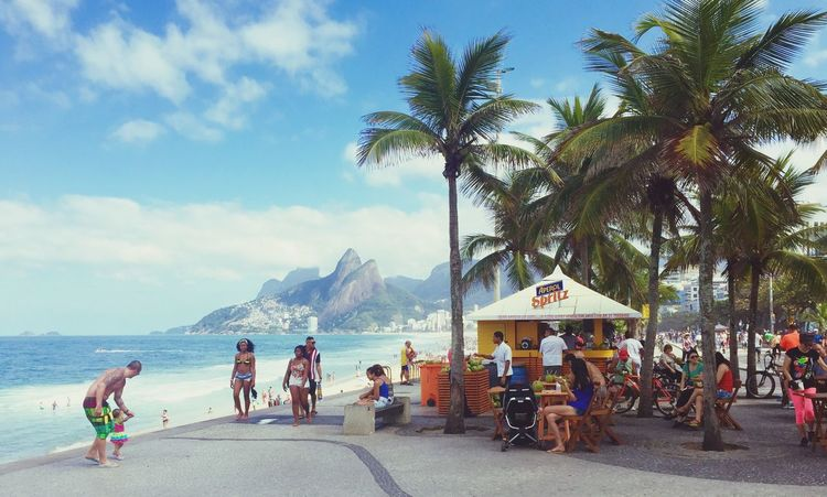 Ipanema Beach Coconut Palms Surfing Waves Riodejaneiro