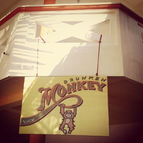 My home for the last few days and I have certainly have been a monkey SriLanka Bars Travel