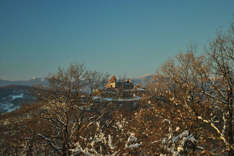 Visegrád castle December EyeEmNewHere Frozen Hungary Nature Visegrád-Hungary Winter Wintertime Ancient Civilization Architecture Branch Built Structure Clear Sky Colorful Day First Day Of December Frozen Nature History Lovewinter Mountain Nature No People Outdoors Place Of Worship Religion Sky Snow Spirituality The First Snow Travel Destinations Tree Valentinamilkovics