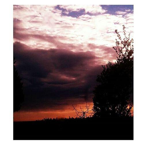 Proteggimi dalle paure col tuo scudo che quelle spade non aspettano un minuto, ma se il nemico sarà forte chiedi aiuto nessuna guerra è stata vinta mai da un solo uomo E ogni sogno che risponde all'universo da questa notte puoi dormire sul mio petto i nostri cuori insieme formano che un esercito senti il mio battito sotto il tuo battito. Guardamiamore Francescorenga Singolo Inédito Aviary Landscape Sky Cielo Nuvole Images Photo Ph Pic Picoftheday Photooftheday Amore Love Solocosebelle Paure Scudo Spade Nemico Guerra Uomo Universo esercito battito