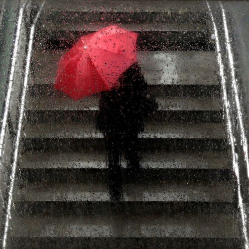 Rainy Days Red
