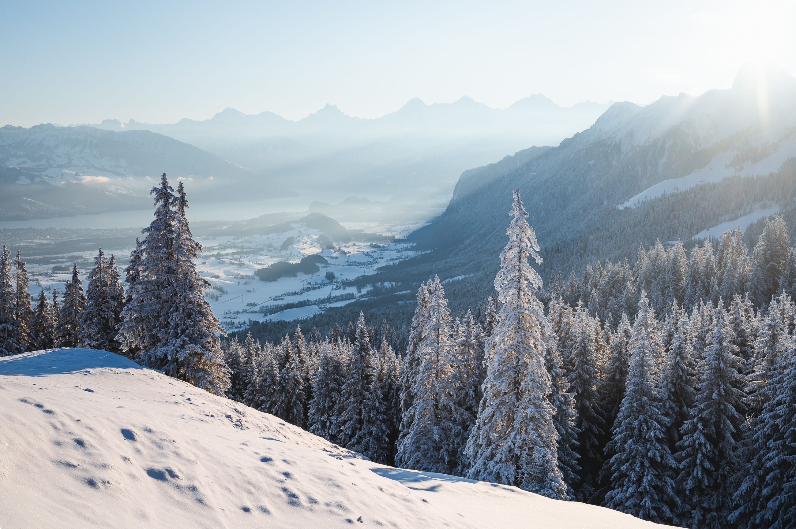 snow, winter, cold temperature, mountain, scenics - nature, tree, environment, landscape, mountain range, beauty in nature, forest, plant, pine tree, nature, coniferous tree, sky, land, pinaceae, pine woodland, tranquil scene, tranquility, ridge, non-urban scene, snowcapped mountain, woodland, fog, no people, travel destinations, frozen, travel, sunlight, outdoors, idyllic, day, blue, mountain peak, piste, wilderness, sun, ice, white, evergreen tree, remote, tourism, rural scene, cloud, morning