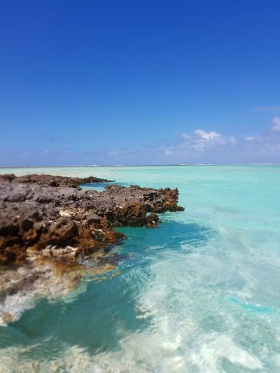 Sea Sky Horizon Over Water Water Blue Beach Beauty In Nature No People Tikehau Island French Polynesia Vacations Tranquil Scene Idyllic Tropical Climate Tourism Travel Destinations Beauty In Nature Mer Ilsland Tahiti Turquoise Colored