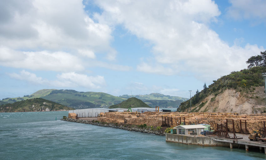 Dunedin,Otago,New Zealand-December 12,2016: Port Chalmers harbour with commercial dock filled with processed logs for export in Dunedin, New Zealand Dunedin Harbour Logging Otago Peninsula Rolling Landscape Stack Abundance Beauty In Nature Commercial Dock Dock Dockside Export Greenery Mountain Mountain Range Nature New Zealand Pile Port Port Chalmers Process Scenics - Nature Shipping  Water Waterfront