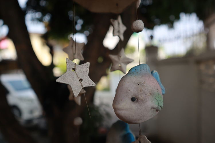 Close-up of stuffed toy hanging on tree