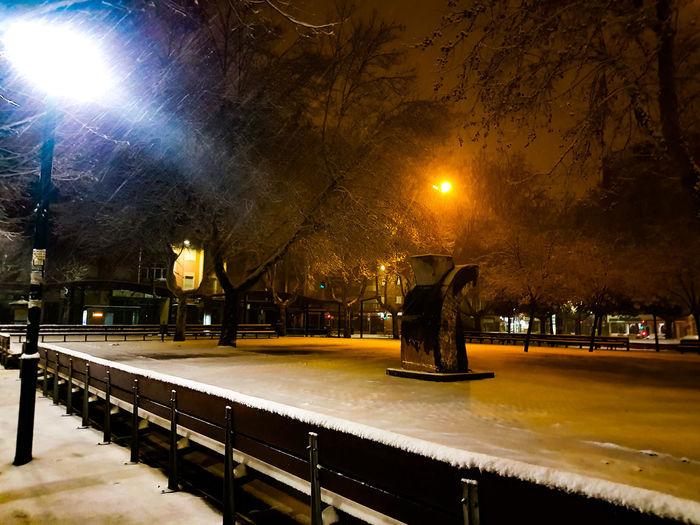 Man in illuminated park against sky at night