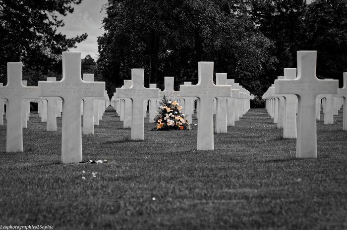 Photographies of colleville sur mer's grayeard, Normandy, France. American Cross France Noir Et Blanc Normandie Soldier Blackandwhite Cimetiere Flower Graveyard Photography Remembrance Restinpeace Secondworldwar Soldats Tombstone Wilted Flower