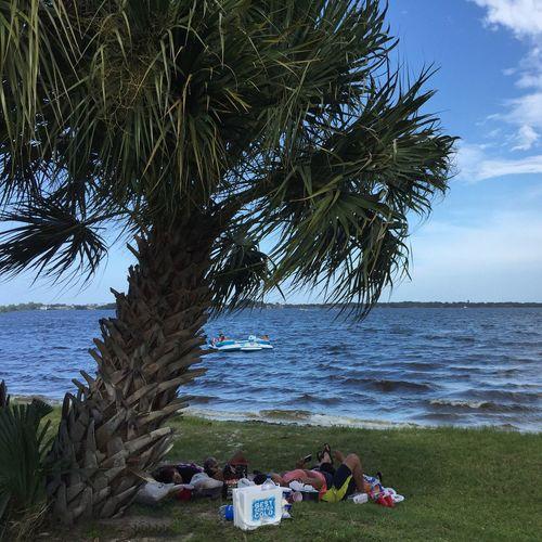 Holiday at the park Suntree Florida Indian River Indian River Lagoon Lazy Day Day At The Park  Palm Tree