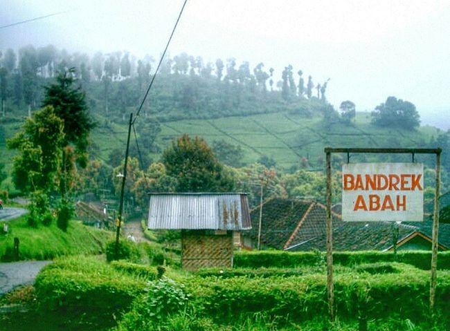Welcome to Ciwidey at Bandrek Abah . Ciwalini Ranca Upas Situ Patenggang Village Landscape Nature Eyem Nature Lover Hills