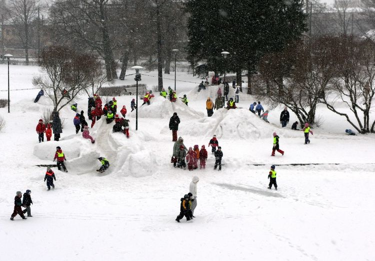Children playing in snowy park, Tallinn Children Tallinn Children Playing Cold Temperature Day Group Of People Leisure Activity Nature Outdoors Playing Real People School Snow Winter