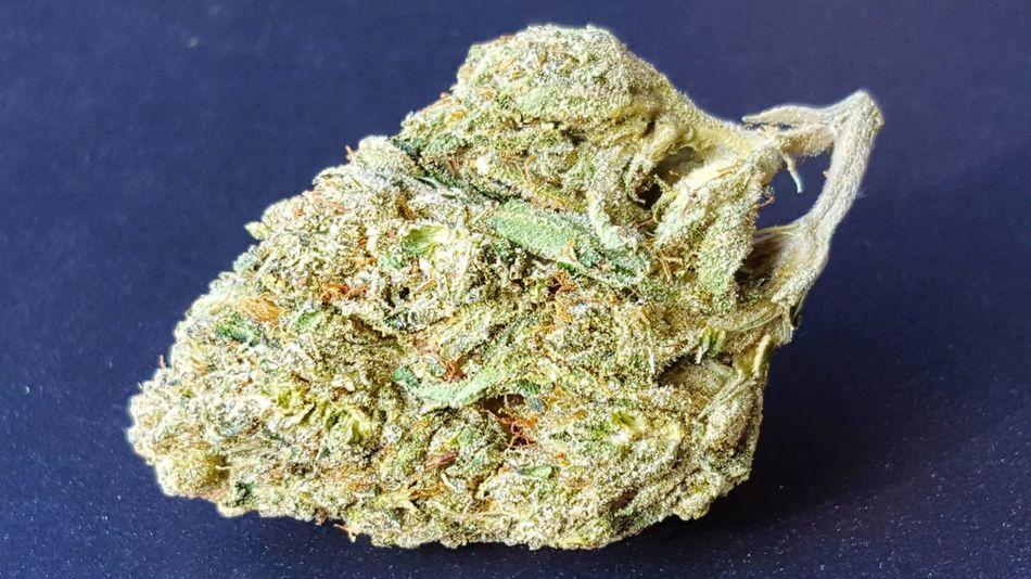 420 Photography Marijuana Photography Chronic  Weed Life Weed 420smokers
