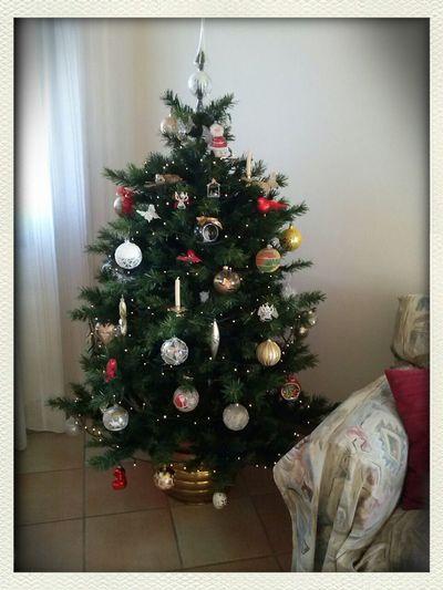 Christmastime Myhome Christmas Tree Happiness