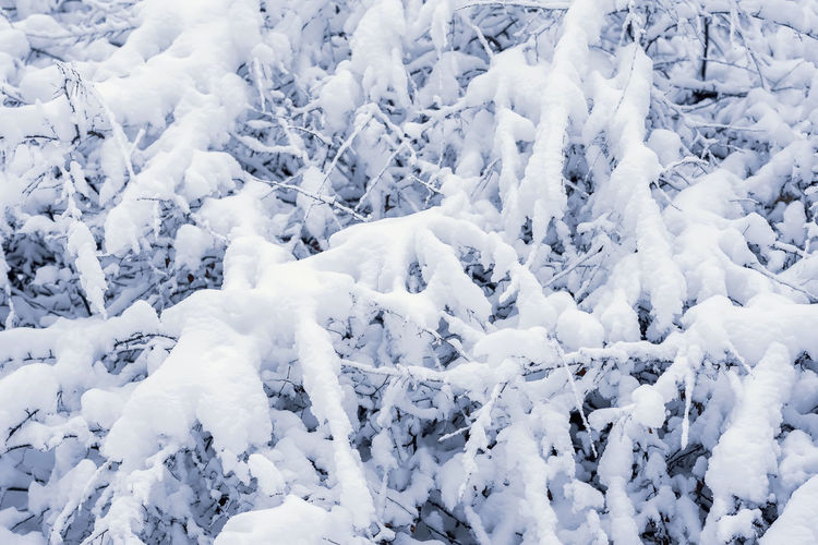 Cold Temperature Winter Full Frame Snowing Idyllic Frozen Outdoors Tranquil Scene Nature Backgrounds Beauty In Nature White Color Day No People Background Christmas Winter Snow Texture New Year Covered