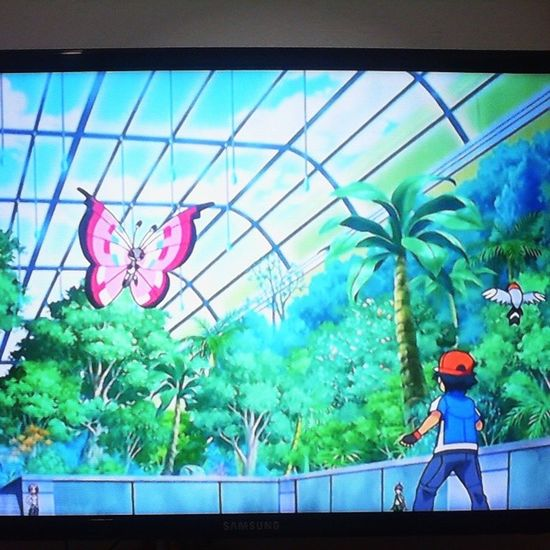 Assistindo Pokémon na madrugada huhuhuhu *.* Deboa ! Criançasdosanos90 Pokemonxy Vivillon