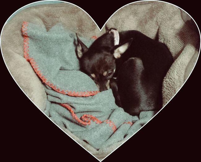 Lola on her 2nd Birthday Sleeping