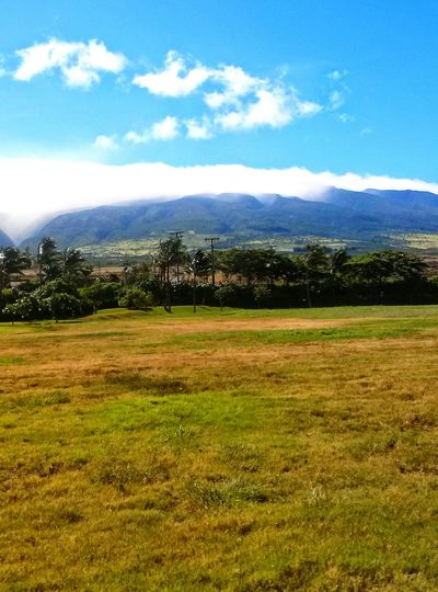 Tranquility Landscape Nature Cloud - Sky Mountain Lush - Description Beauty In Nature Grass Outdoors Kula Hawaii Maui Nokaoi Pacific Paradise