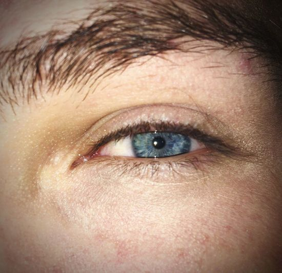 Eyesight Human Eye Eyebrow Eyeball Blue Eyes Close-up Eyelash Iris - Eye People
