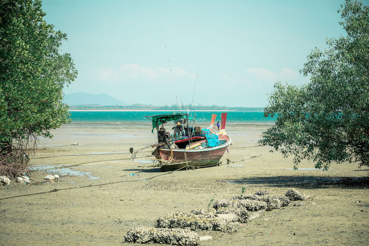 Transportation Nautical Vessel Mode Of Transportation Water Sky Sea Day Nature Tree Plant Land Beach Moored No People Scenics - Nature Tranquility Outdoors Beauty In Nature Sand Fishing Boat