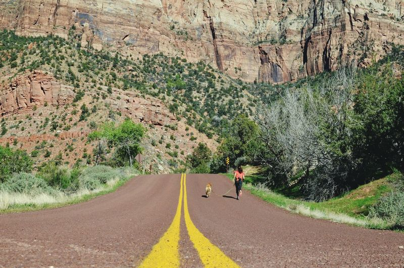 """""""Running on, running on empty."""" This reminds me of both Forrest Gump and Jackson Browne's """"Running on Empty."""" Zion National Park Running Perspective Fitness Woman Running With Dog Low Angle View Low Angle Shot Of Woman Running On Road Perspectives Exercise Sunny Day Mountains National Park Lines Double Yellow Lines Backgrounds Amazing Views The Great Outdoors - 2016 EyeEm Awards The Storyteller - 2016 Eyeem Awards The Street Photographer - 2016 EyeEm Awards Feel The Journey Miles Away Live For The Story Breathing Space Investing In Quality Of Life"""