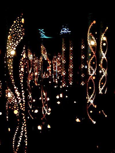熊本竹灯篭 Seeing The Sights Bamboo Lanterns Bamboo Lanterns Japanese Castle Lights Kumamoto-shi Kumamoto Castle Night Photography Colors