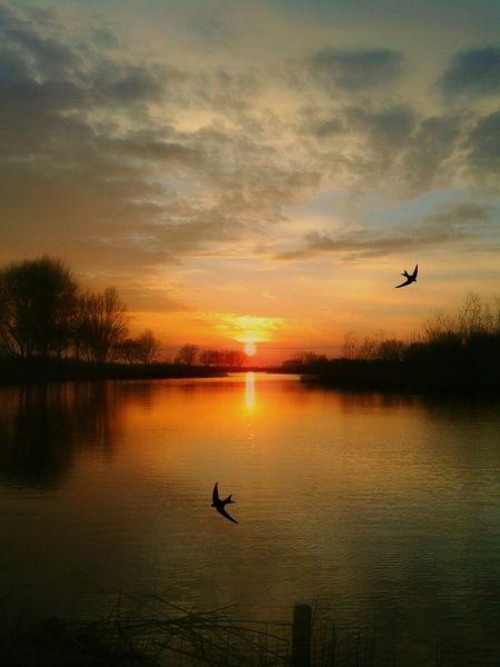 Magic Hour Dutch Dreamscapes Hollandse Droomlandschappen Showcase April Landscapes