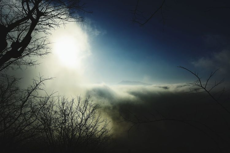 Sulle nuvole. Winter Fog Hills Italy Sunset No People Beauty In Nature Silhouette Outdoors Sky Day Tree