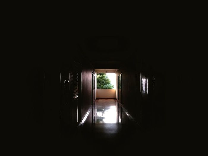 shadows EyeEm Selects Indoors  Architecture No People Water Day Tree Colour Your Horizn EyeEmNewHere