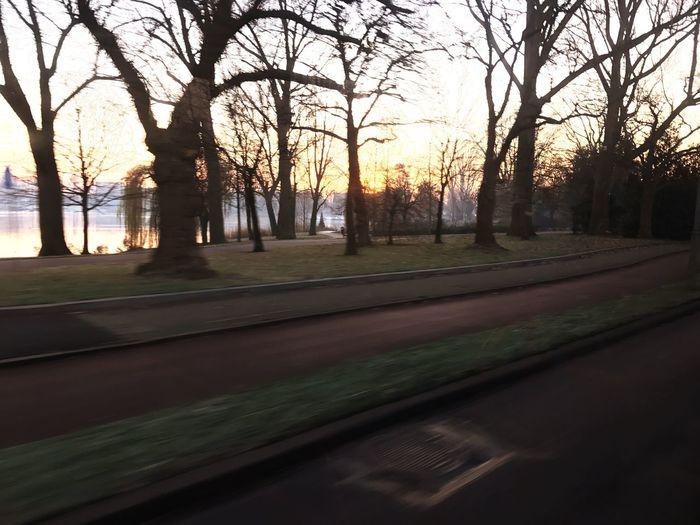 Bus Onmywaytowork Sundown Outdoors