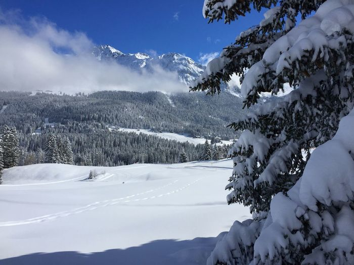Lenzerheide Fadail Snow Blue Sky Winter Wonderland Winter Snow ❄ Switzerland Auarara