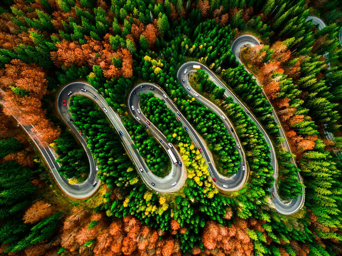 Aerial view of winding road during autumn