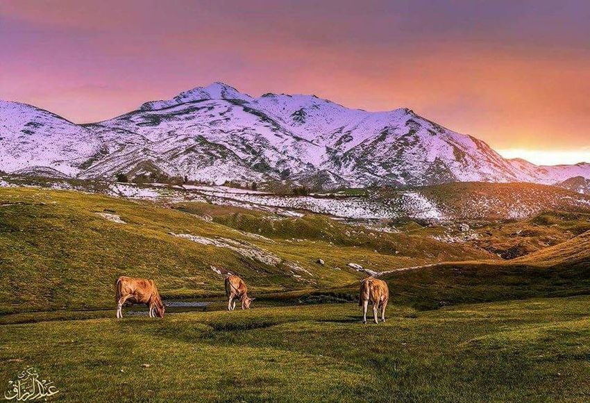 Mountain Snow Desert Sky Mountain Range