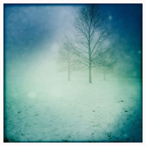 Out in the cold Winter Snow ❄ Freezing ❄ Hipstamatic Walking Around