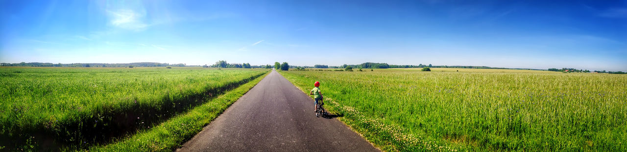 Child Agriculture Blue Cereal Plant Cloud - Sky Crop  Day Farm Field Full Length Grass Green Color Growth Landscape Nature One Man Only One Person Outdoors Rural Scene Sky The Way Forward Walking