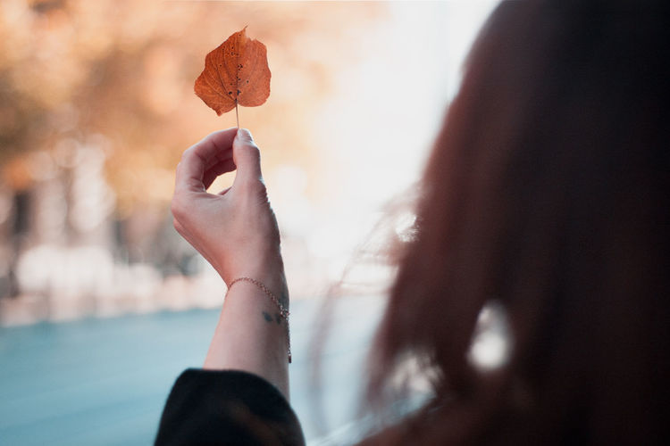Autumn Adult Autumn Close-up Day Finger Focus On Foreground Freshness Hand Holding Human Body Part Human Hand Leaf Leisure Activity Lifestyles Nature One Person Outdoors Plant Part Real People Selective Focus Women