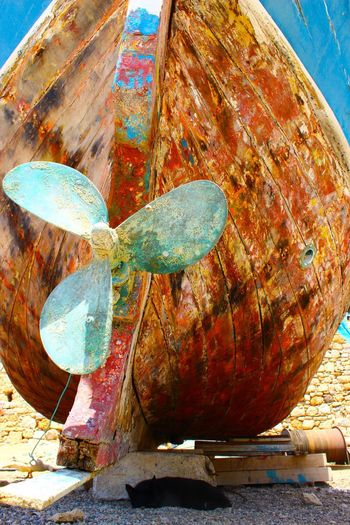 Rust Ship Screw Animal Animal Themes Animal Wildlife Animals In The Wild Blue Close-up Day Focus On Foreground Food Food And Drink Metal Nature No People Old Outdoors Propeller Rusty Still Life Sunlight Tourquise Turquoise Colored Water Wood - Material