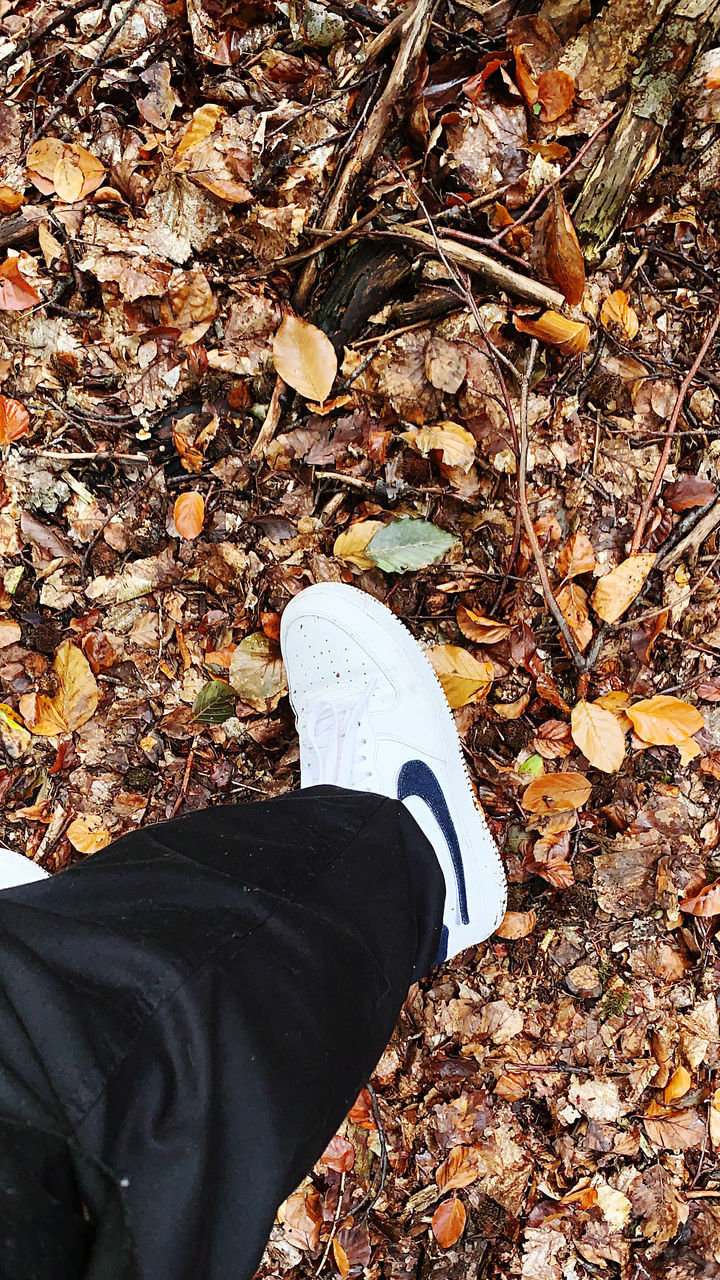 low section, personal perspective, human leg, shoe, human body part, autumn, one person, change, real people, body part, leaf, plant part, dry, lifestyles, day, nature, land, leisure activity, field, leaves, outdoors, human foot, human limb, messy, fall, jeans